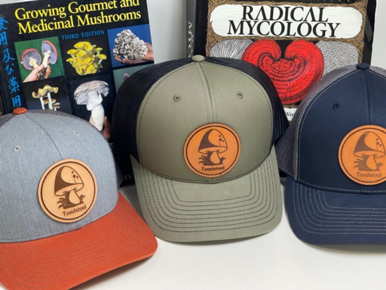 mushroom-hats-toadstool